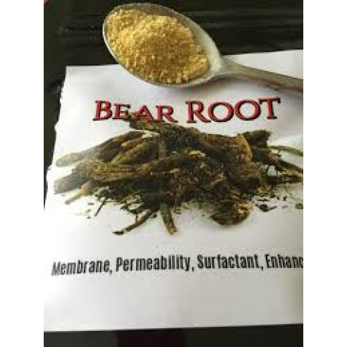 Bear Root  (85 grams) for lungs, throat & respiratory system