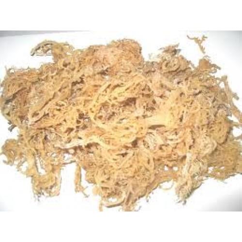 Irish Sea Moss 16 oz. Loaded with minerals.