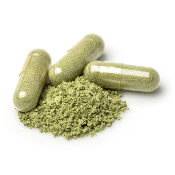 Lifefood natural medicines herbal remedies body care wildzymes forumfinder Image collections